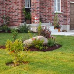 """Front garden from the neighbour's lot showing the new mulch on the """"rock"""" garden"""