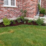 """The """"porch"""" garden with the new mulch"""