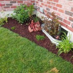 """The """"lounge"""" garden with the new mulch, one of the day lilies and the bracken fern."""